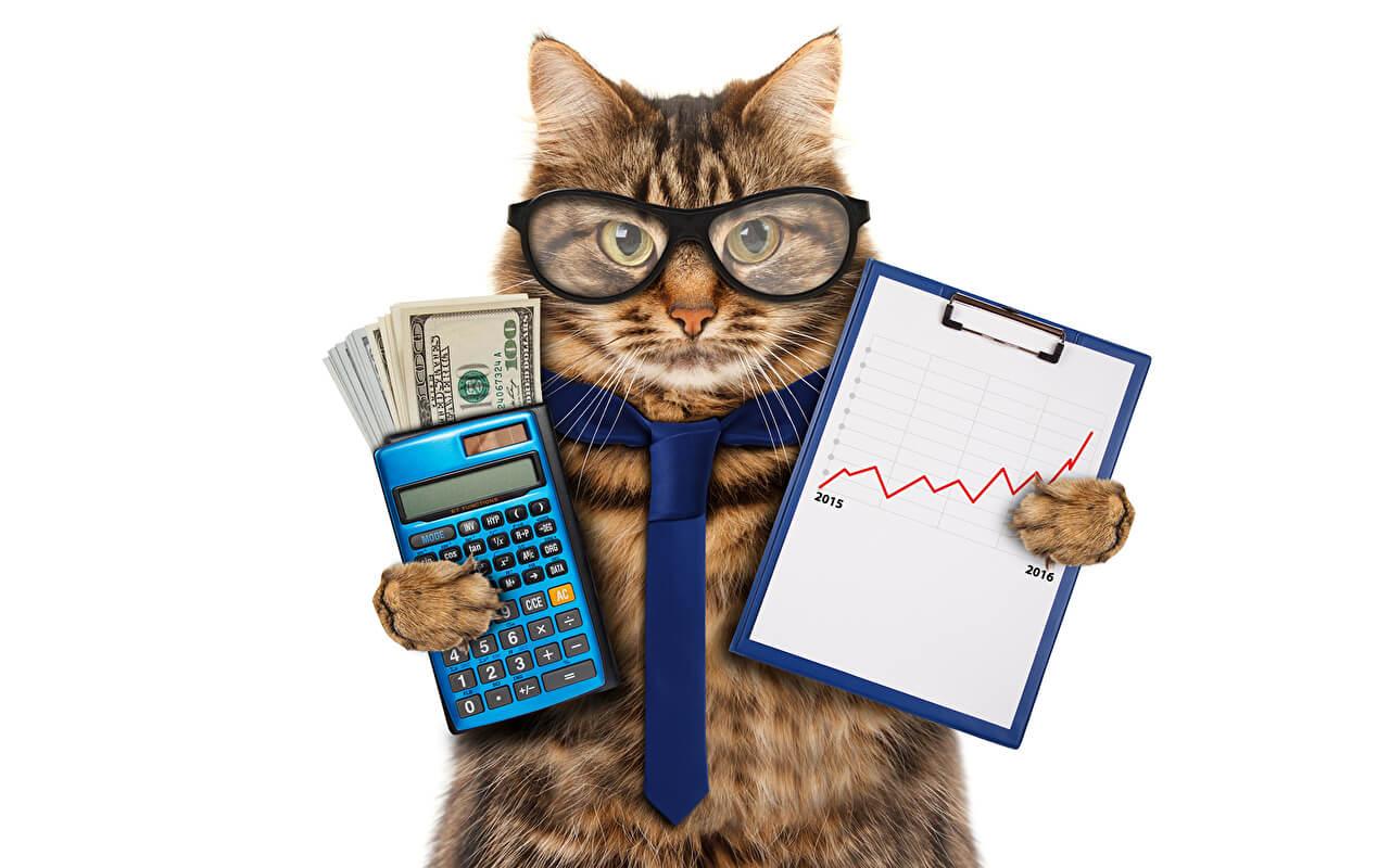Ключевые слова для рекламы бухгалтерских и юридических услуг